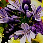 Agapanthus and Yellow Lily Bouquet by Rebecca Bryson