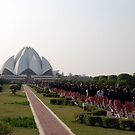 lotus temple by sharon allitt