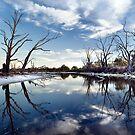 Lyrup Flats by Steve Chapple