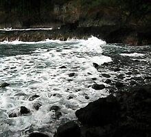 Black Rocks White Waves by bloomingvine