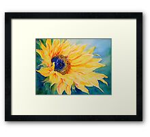 Sunburst #2 Framed Print
