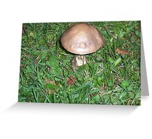 Freaky Little Toadstool Man Greeting Card