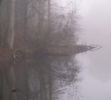 The Pond shrouded in fog by Jim  McDonald