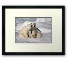 Polar Bear Brothers Framed Print