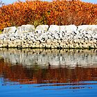 Water Reflection I (lakeshore) by sendao