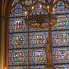Notre Dame stained glass window, Paris, France by chord0