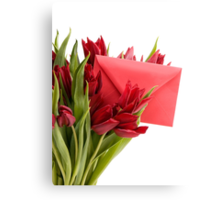 Bouquet of cut red tulips  Canvas Print