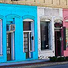 Orangeburg Shops by Leta Davenport