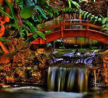 Sunken Gardens Bridge Falls by sailorsedge