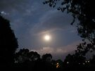 Moonrise:Hottest Night on Record by Tania  Donald