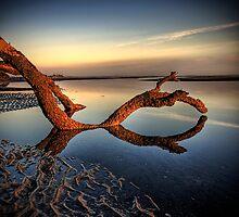 Strange by Chris Lofqvist