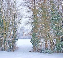 Winter Wonderland by LucyAnnx