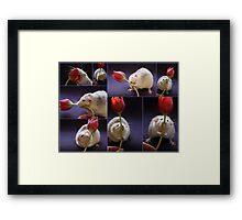I love tulips! Framed Print