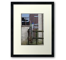 Someone Is At The Door Framed Print