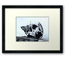 Skull and Chameleon Framed Print