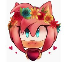 Amy Rose (Sonic the Hedgehog) Photographic Print