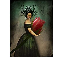 Mona's rose Photographic Print