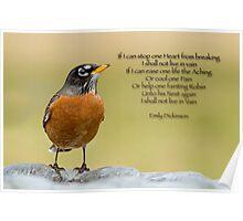 Emily Dickinson's Robin Poster