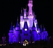 Cinderella's Castle by loashheg
