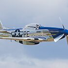 "Mustang P-51D ""Excalibur"" by jnmayer"