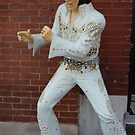 Elvis in da House! by Debbi Tannock