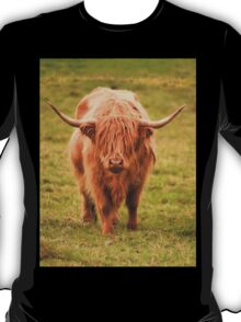 Highland Cow in Scotland T-Shirt