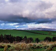 Green fields, white hills by Agnes McGuinness