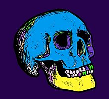 Skull Colours by Snaflein