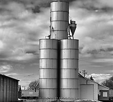 Grain and Silo by J. D. Adsit