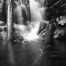 Lillydale Falls B&W by David Henderson