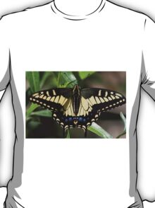 A Swallow's Art T-Shirt