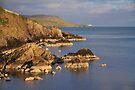 Brei Wick and Bressay, Shetland by Richard Ion