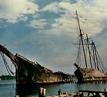 old ship wrecks on the coast of Maine   1971 by royallphoto
