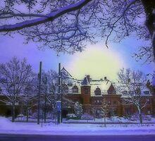 Winter art by LudaNayvelt