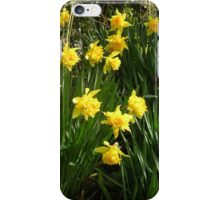 Double Daffodils iPhone Case/Skin