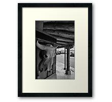 Rattlesnake Museum, Old Town, Albuquerque Framed Print