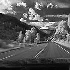 Drive by Douglas Barnes
