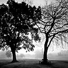 Misty Moments by dinghysailor1