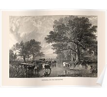 Evening in the Meadows Poster