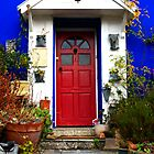 Red Door Blue House by andymcgeechan