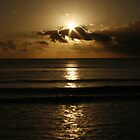 Golden evening star by Ashley Boland