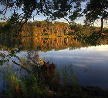 Morning Reflections by Mike Salway