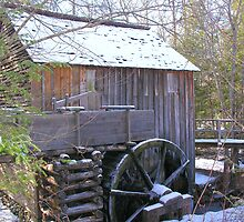Frozen Grist Mill by Phyllis Wilson