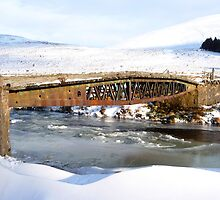 Bridge over Icy Waters by Braedene