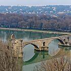 Le Pont d'Avignon by Steve
