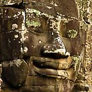 bayon by dave whyte