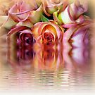 Rosewater Reflections by Elaine Bawden