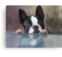 Peek A Boo Canvas Print
