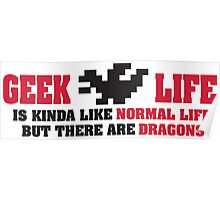 Geek life is kinda like normal life. But there are dragons! Poster