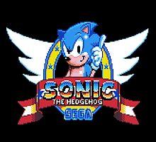 Sonic The Hedgehog by taguzga
